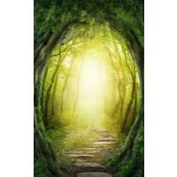 Click Props Achtergrond Vinyl met Print Enchanted Pathway 1,52 x 2,44m